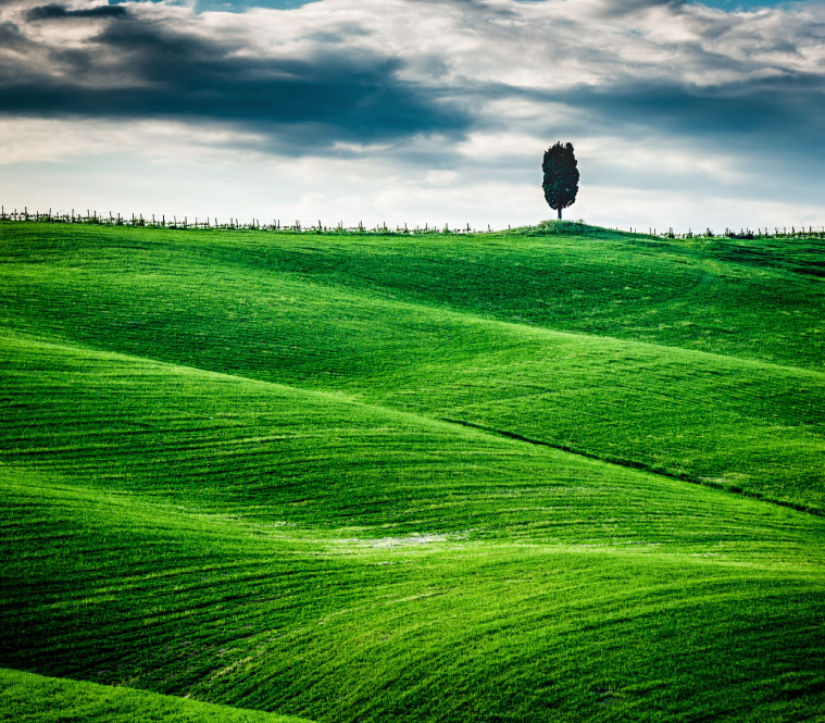 tuscan-hill